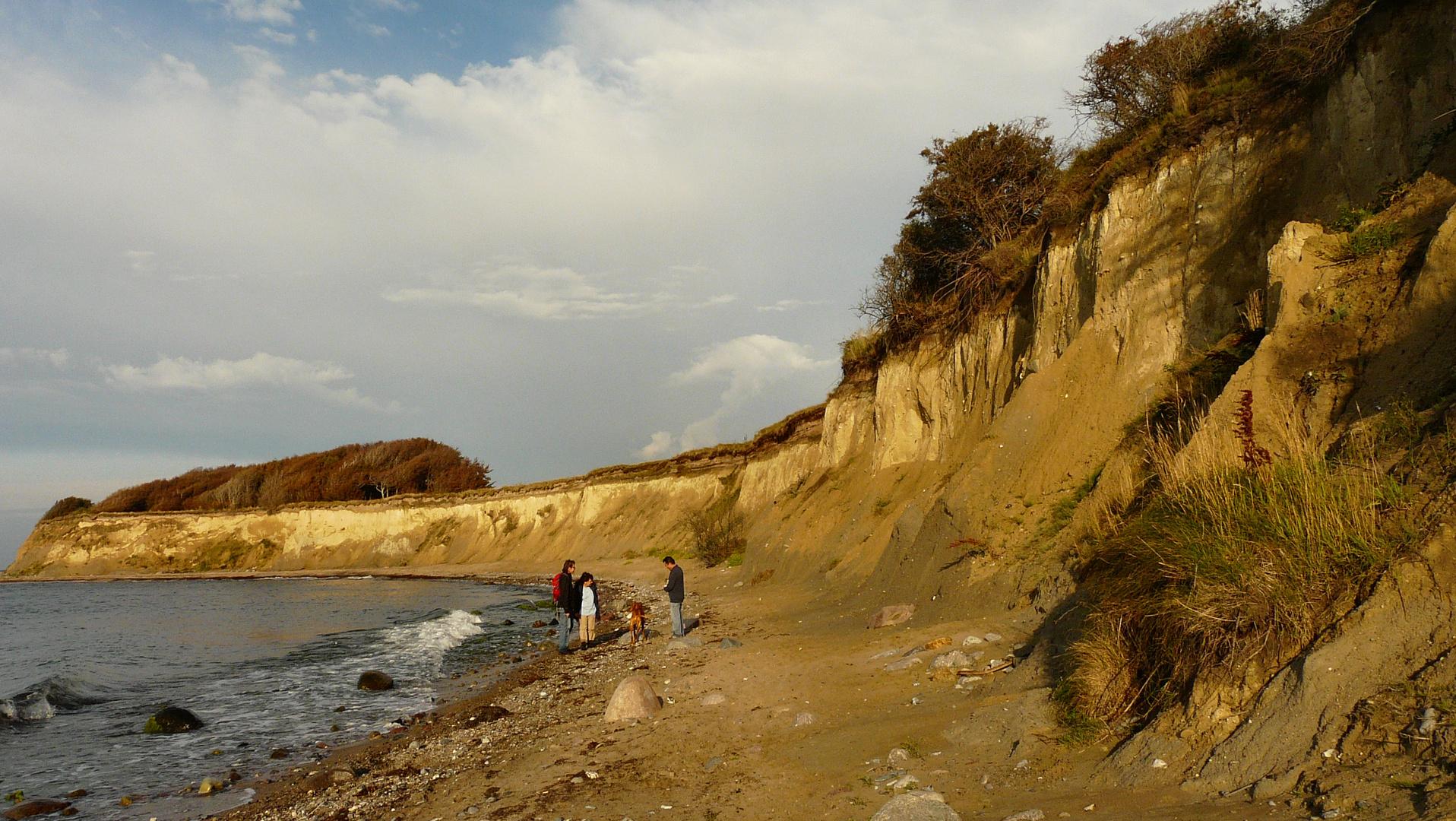 Kreptitzer Steilküste am Abend
