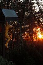 Kreuz in der Abendsonne