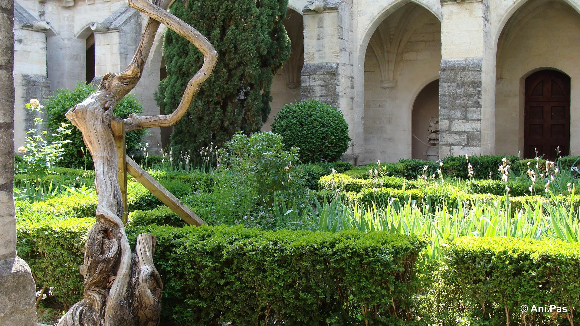 Kreuzgang II, La Chartreuse, Villeneuve-les-Avignon, Provence