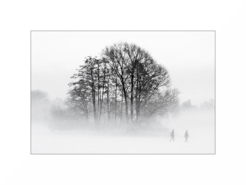 Kreuzteich, im Nebel
