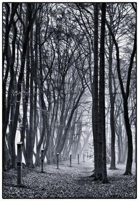Kreuzweg im Nebel #1