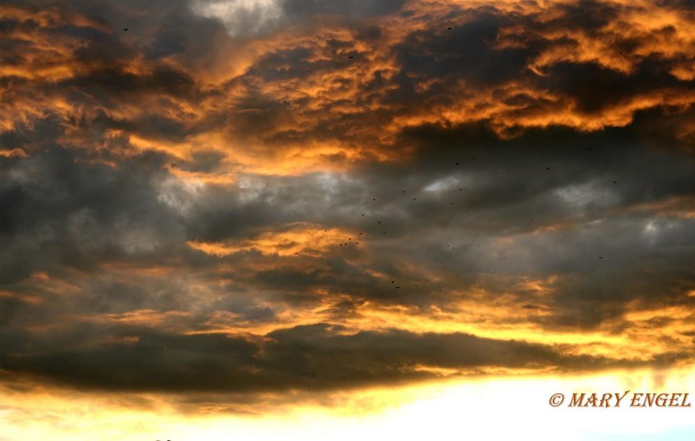 krieg der wolken