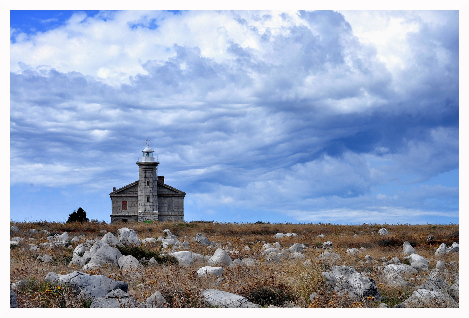Kroatien - Delphininsel