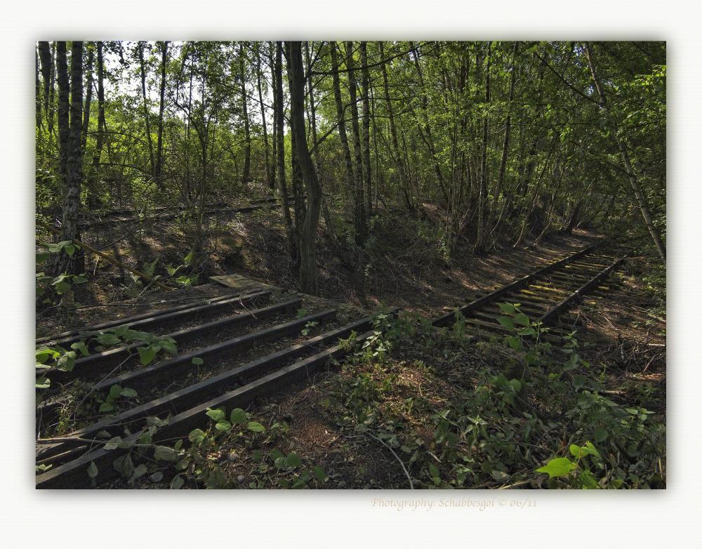 Kruppwerksbahn Mehrschienengleis  Teststrecke ( 1 )
