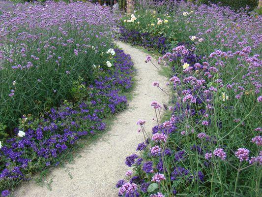 KS Botanischer Garten (3)