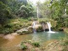 kuba regenwald trinidat