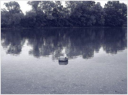 Kübel in Wasser - eine Landschaft