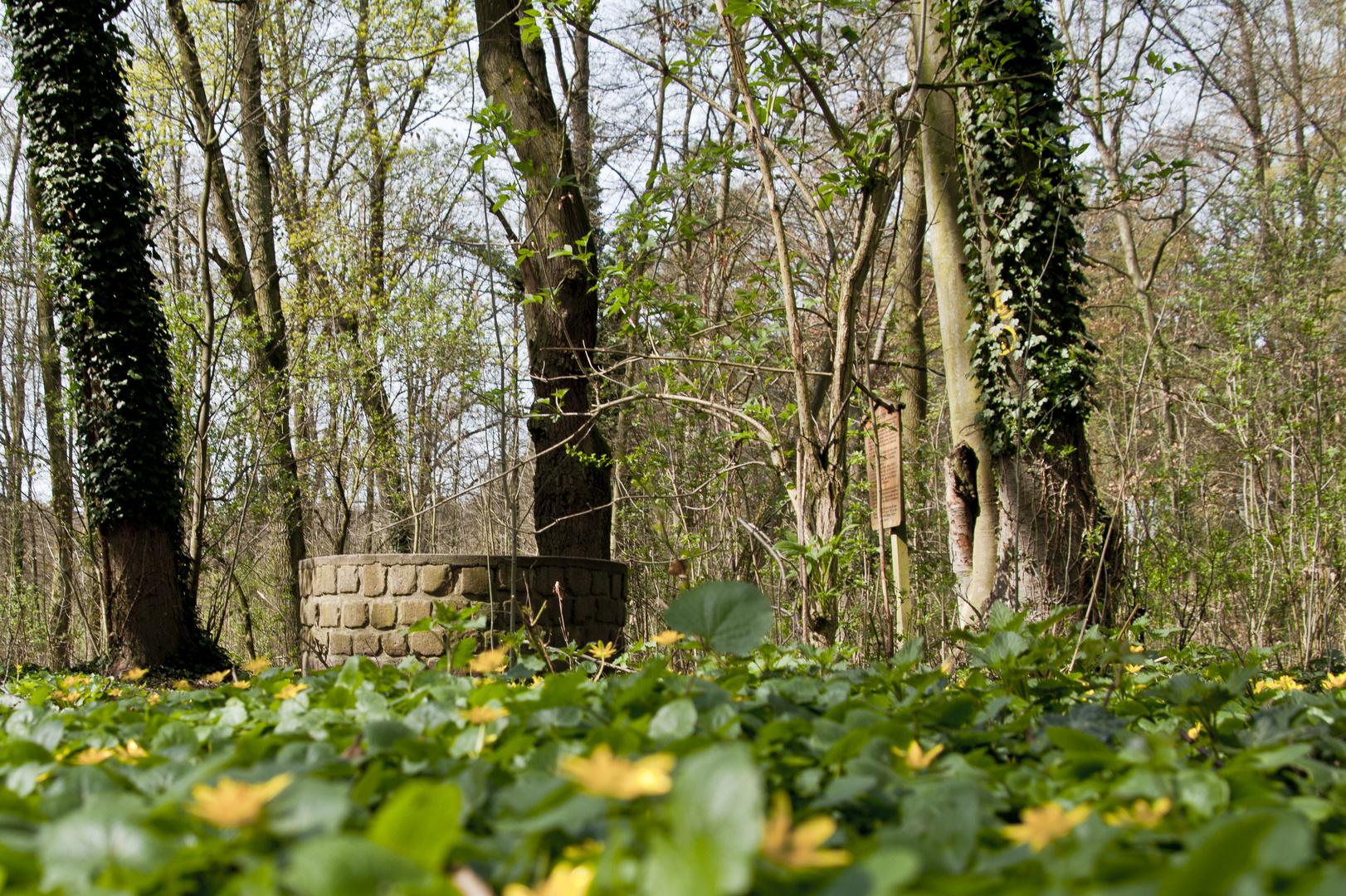 Kühbrunnenweg Friedrichsfeld