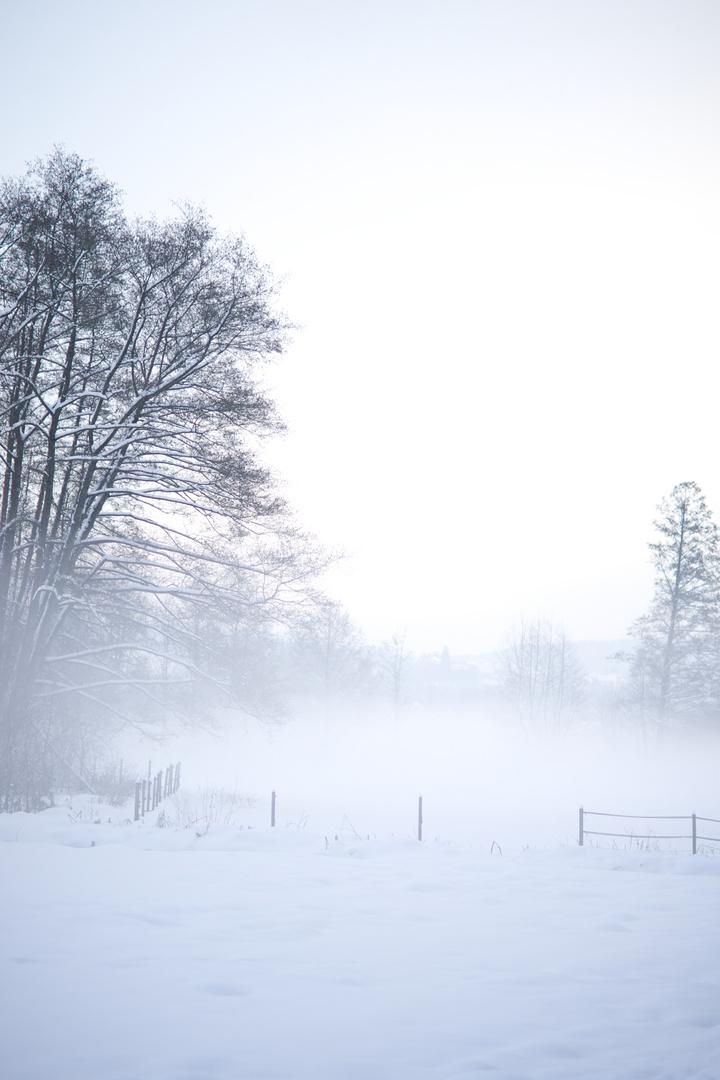 kühle nebel