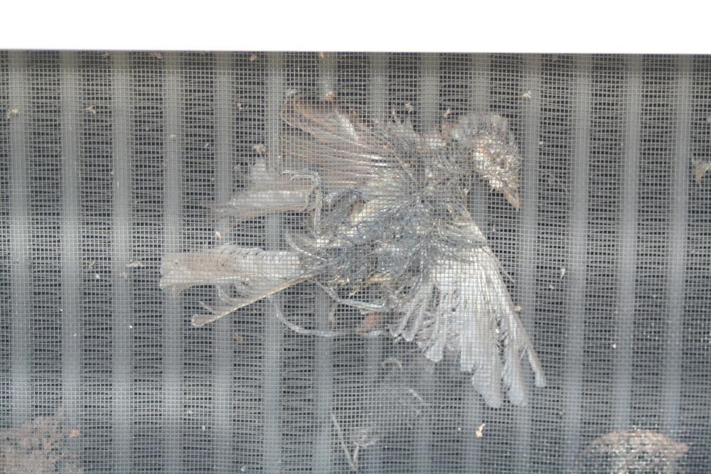 Kühlergrill-figur