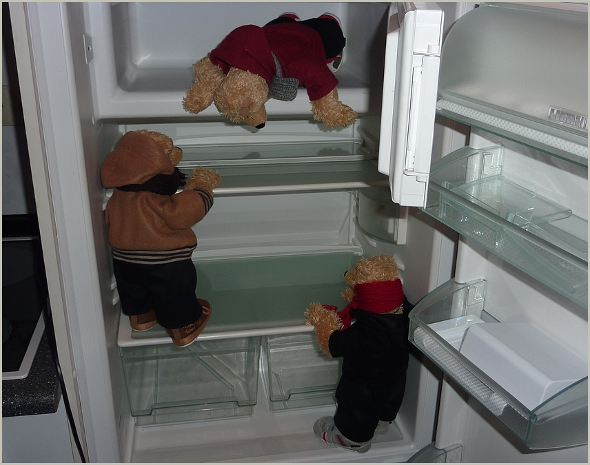 Kühlschrank ist leer.....