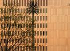 Künstliche Palme vor dem BND- Berlin-Mitte