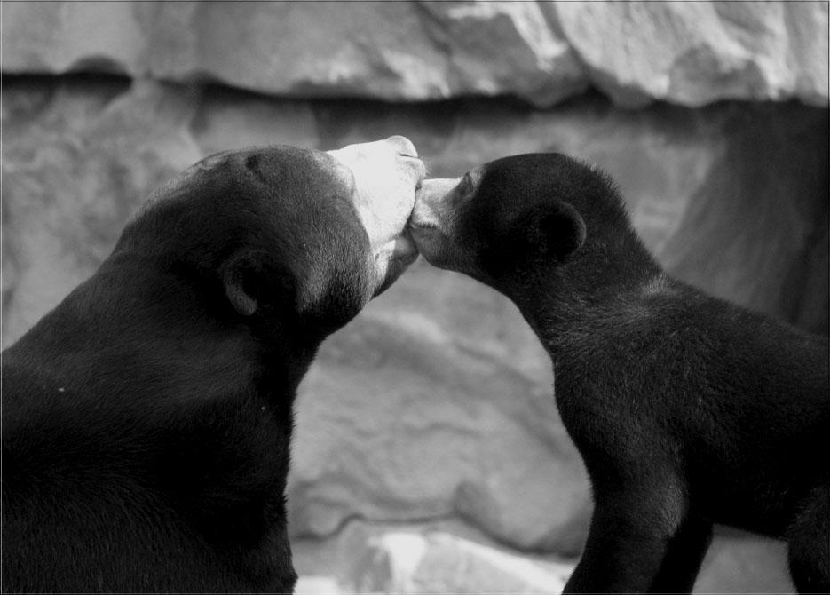 ... Küsschen ...