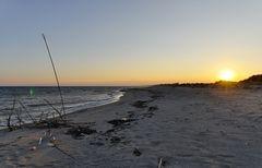Küste bei Botricello im September