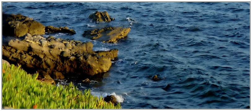 Küste EBV