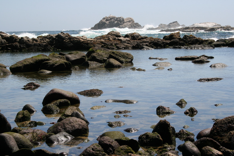 Küste Quintay - Chile