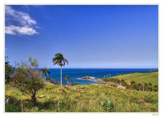 Küste@Dominica (II)