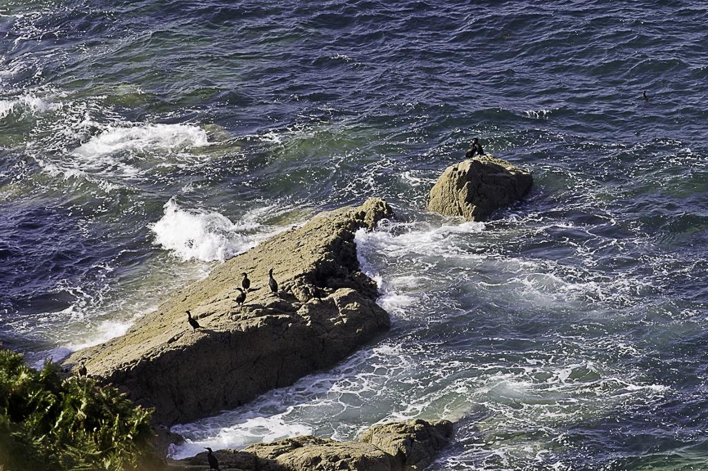 Küsten der Bretagne 10