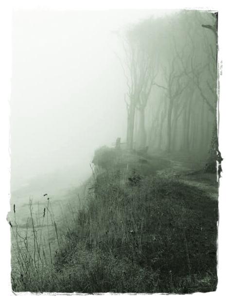 Küsten Nebel ....