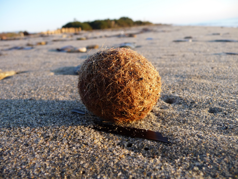 Kugel am Strand