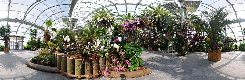 Kugelpanorama Mainau Orchideenschau