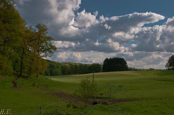 Kuh-Weide-Land