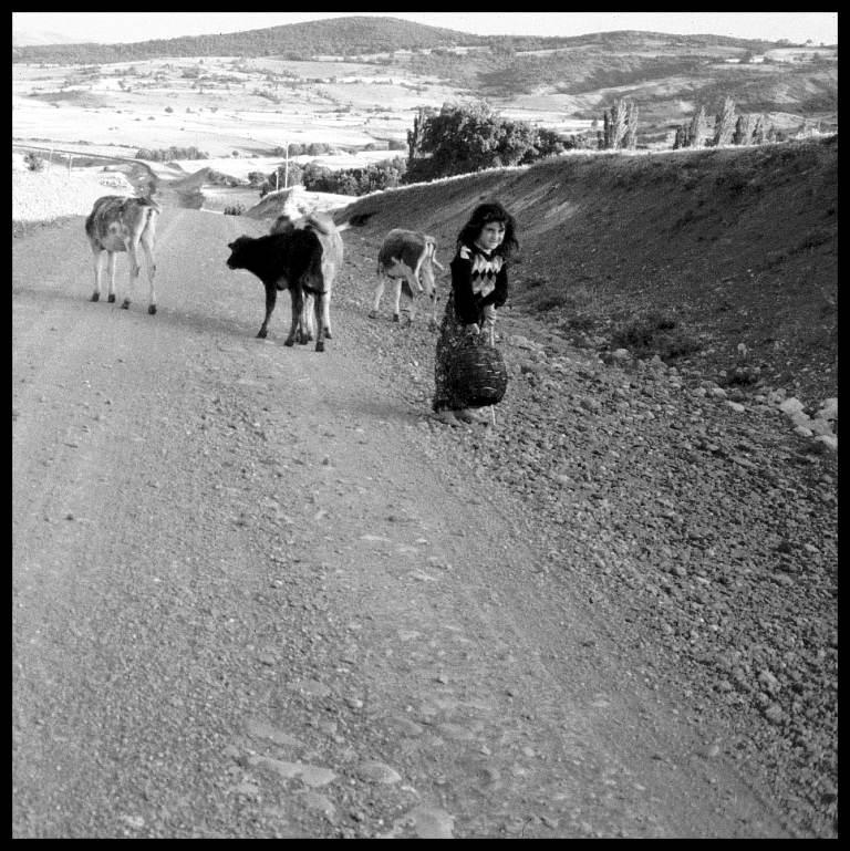 Kuhhirtin, Türkei 1989