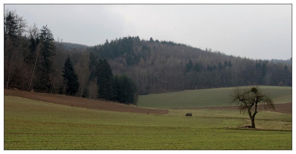 Kultur im Odenwald