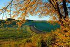 Kulturlandschaft im Herbst 2