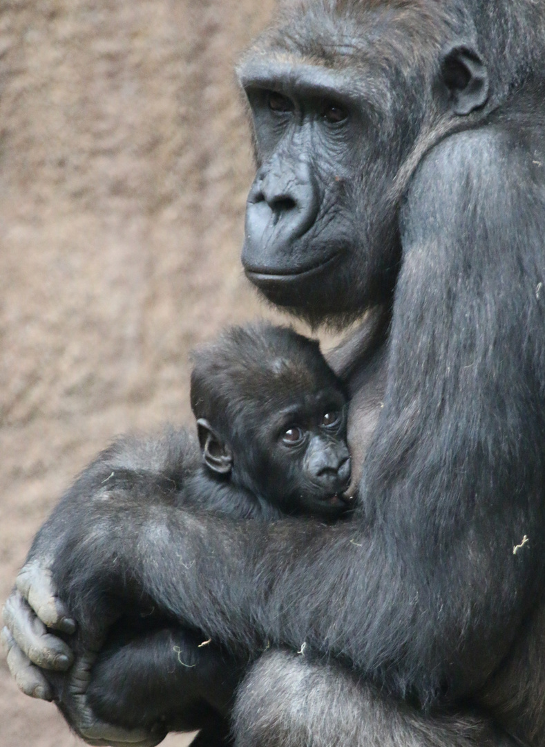Kumili stillt ihr Baby
