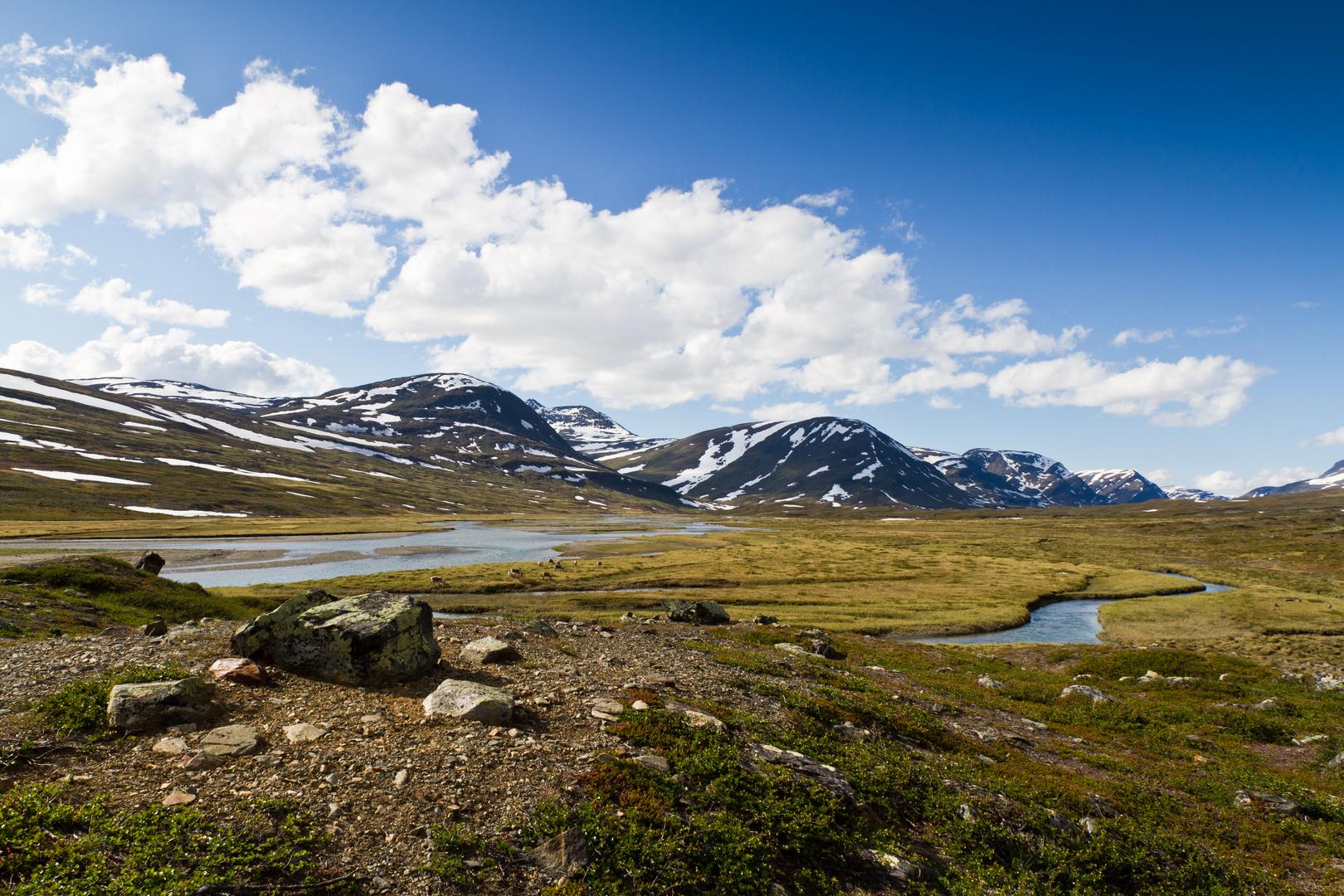 Kungsleden nahe der Singi-Hütte