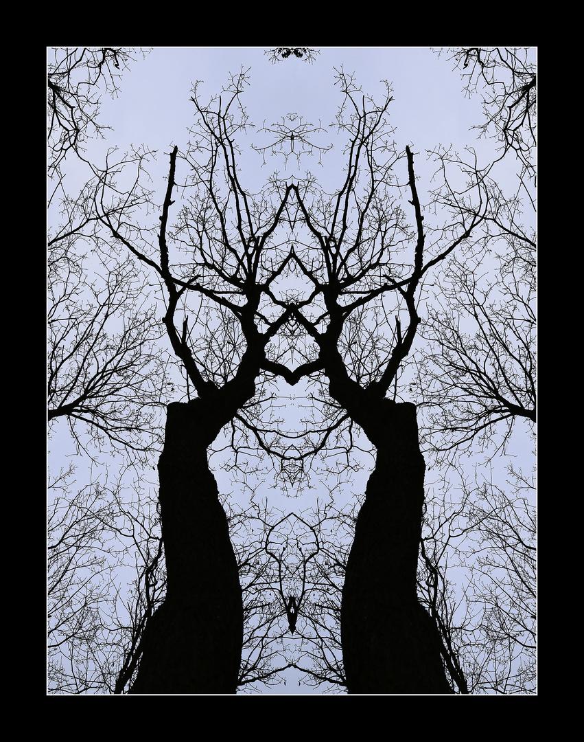 Kunst aus der Natur