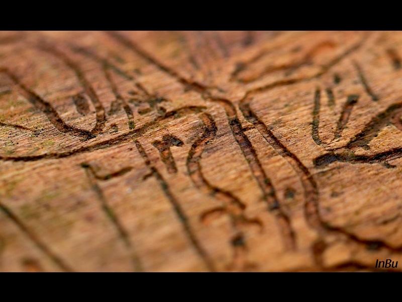Kunst im Holz