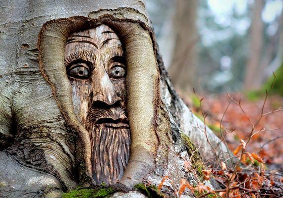 ...Kunst mitten im Wald...