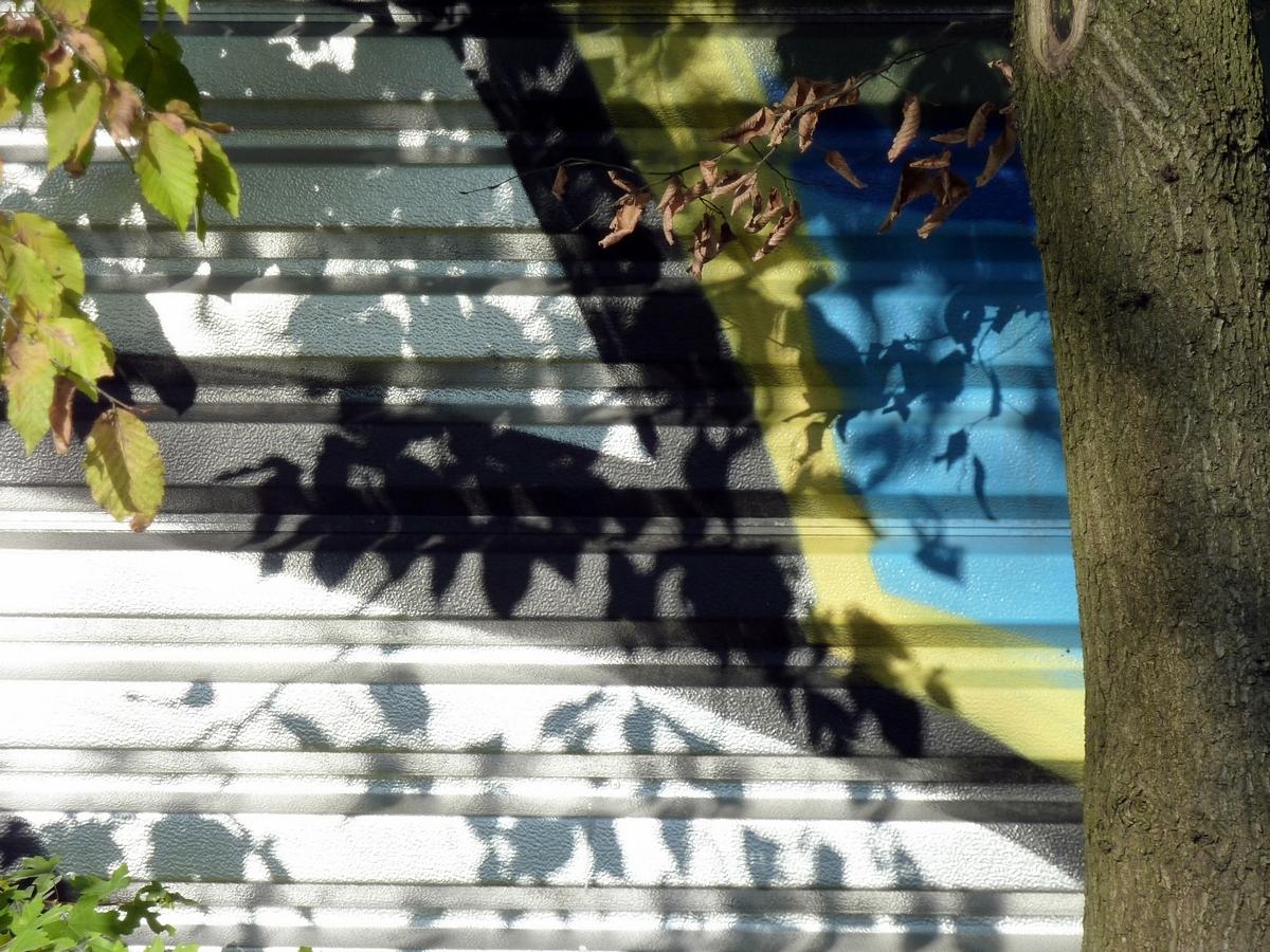 Kunst, Natur und Licht (3)
