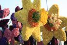 Kunstvoll hergestellte Blumen beim Blumencorso in Holland