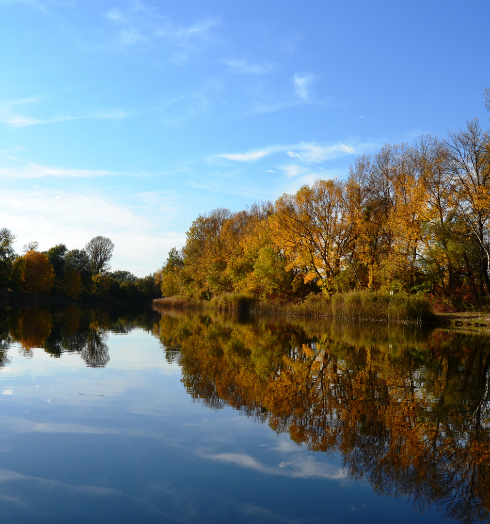 *kunterbunter Herbst*