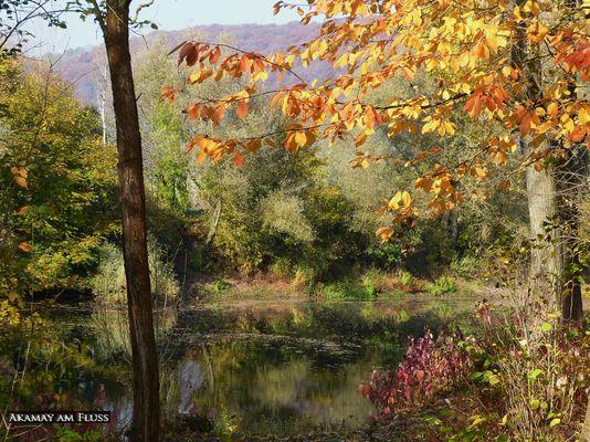 Kunterbunter Herbst a.d.Weser