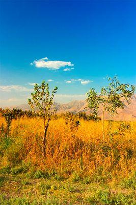 Kurdistan Landschaft