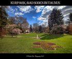 Kurpark Bad Soden III