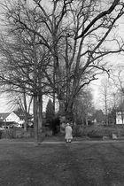 Kurpark, Hennef, Germany, 2013