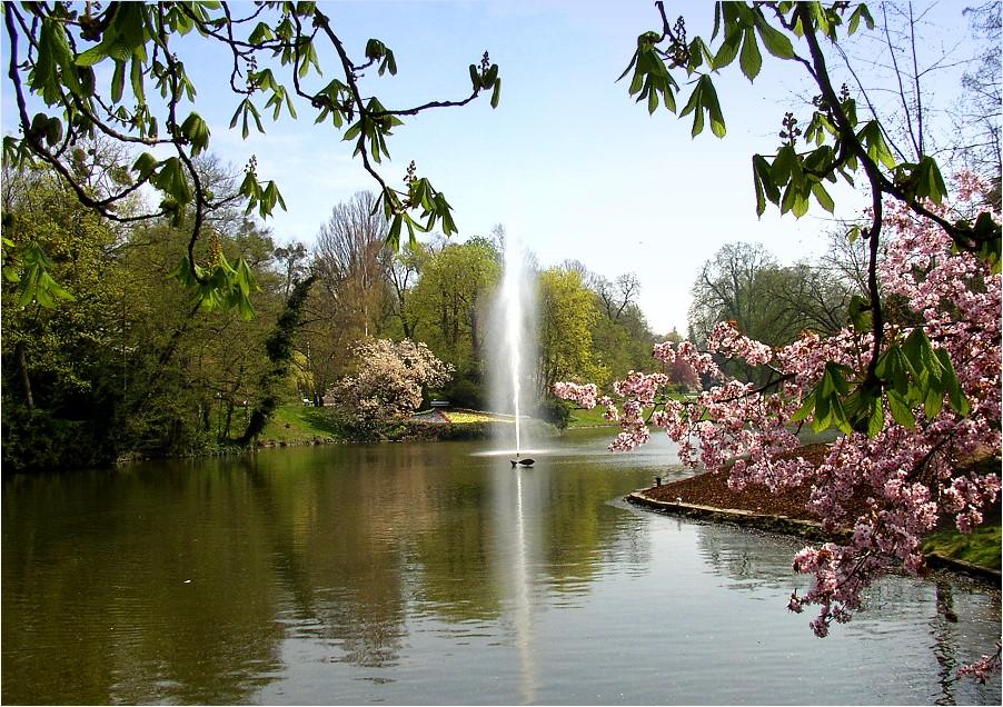 Kurpark Wiesbaden Foto & Bild | deutschland, europe ...