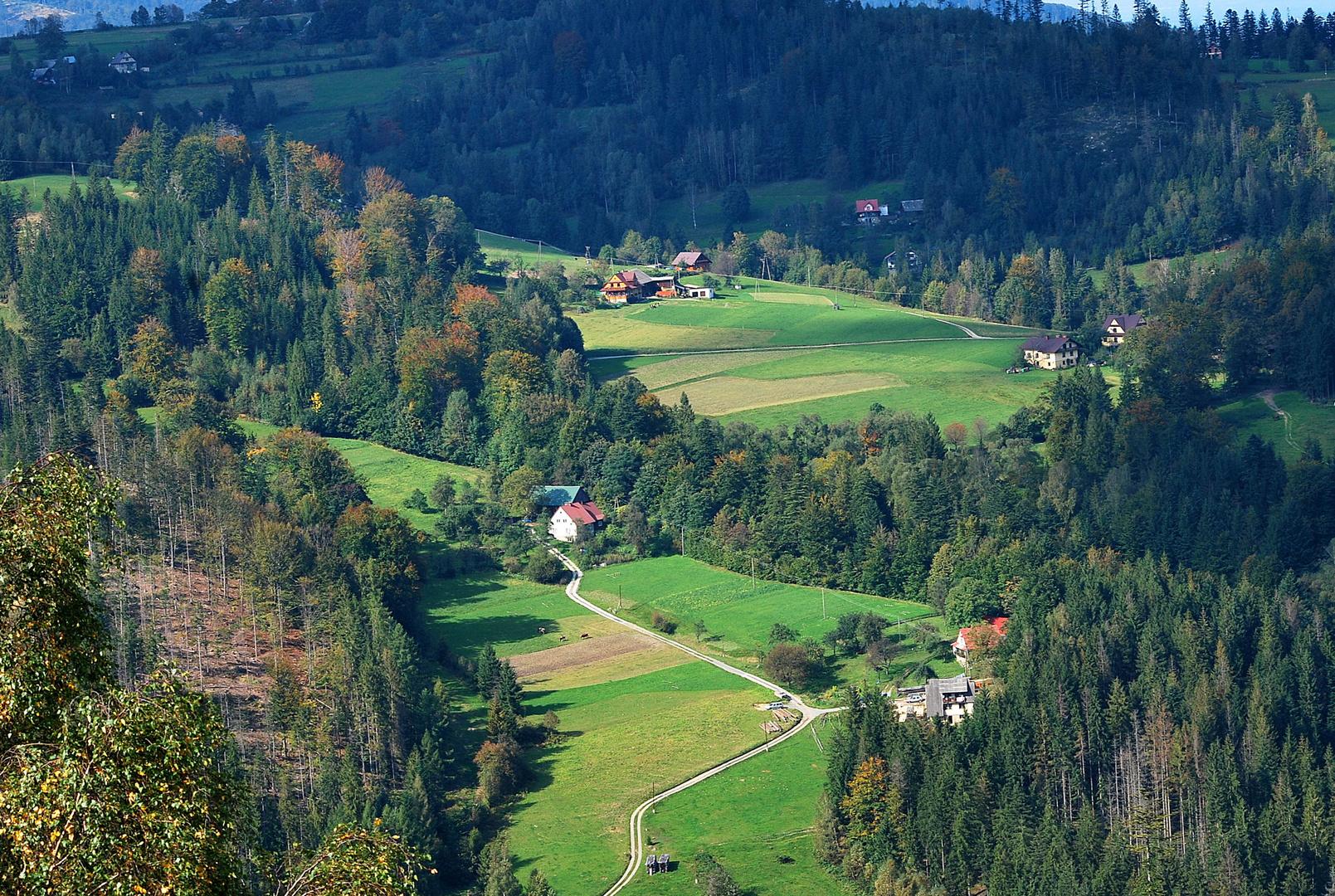 Kurviger Weg in Beskid Slaski (Polen)