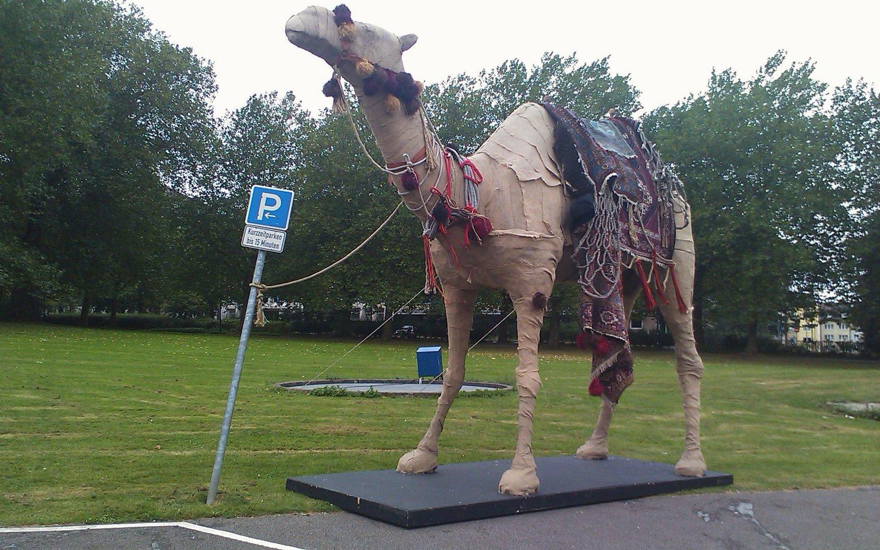 """""""Kurz geparktes Kamel"""""""