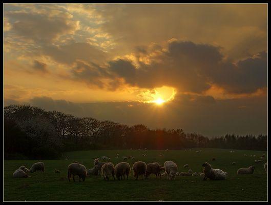 Kurz von Sonnenuntergang