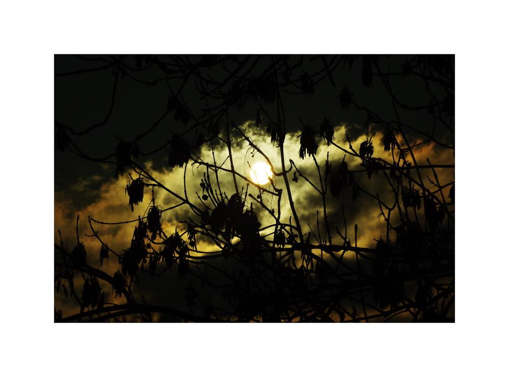 Kurz vor der Sonne