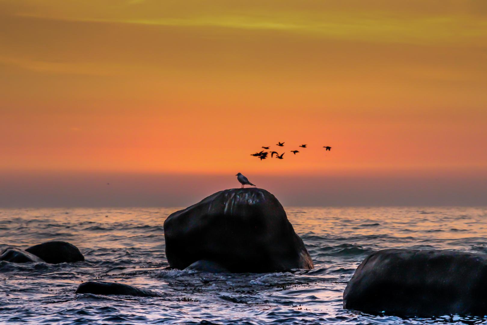 ...kurz vor Sonnenaufgang auf Rügen