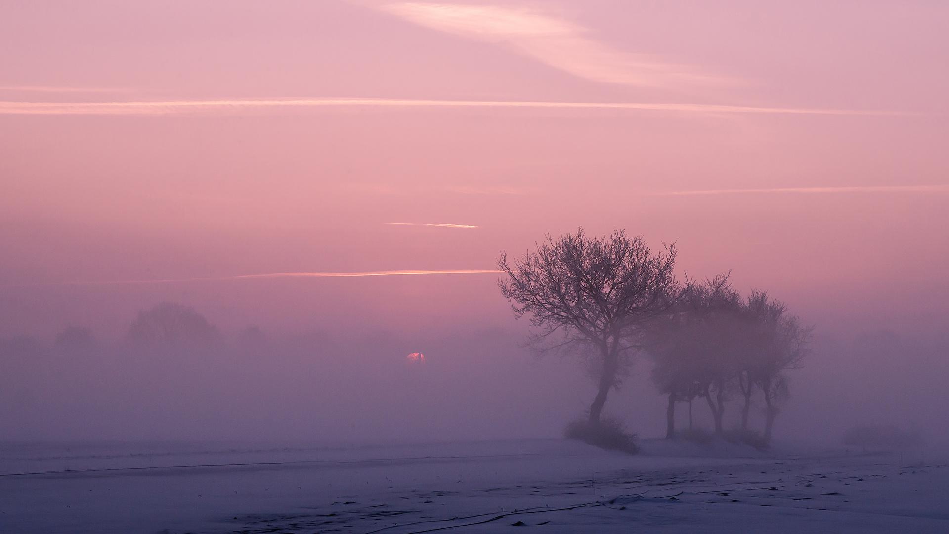 Kurz vor Sonnenaufgang im Winter