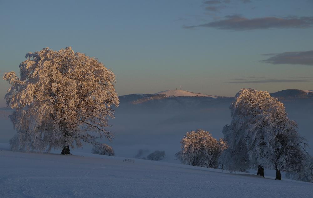 Kurz vor Sonnenuntergang auf dem Schauinsland (Südschwarzwald)