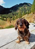 kurze Rast in den Dolomiten